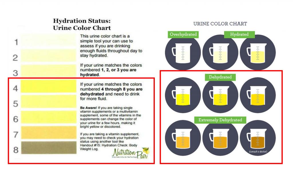 図2脱水時の尿の色